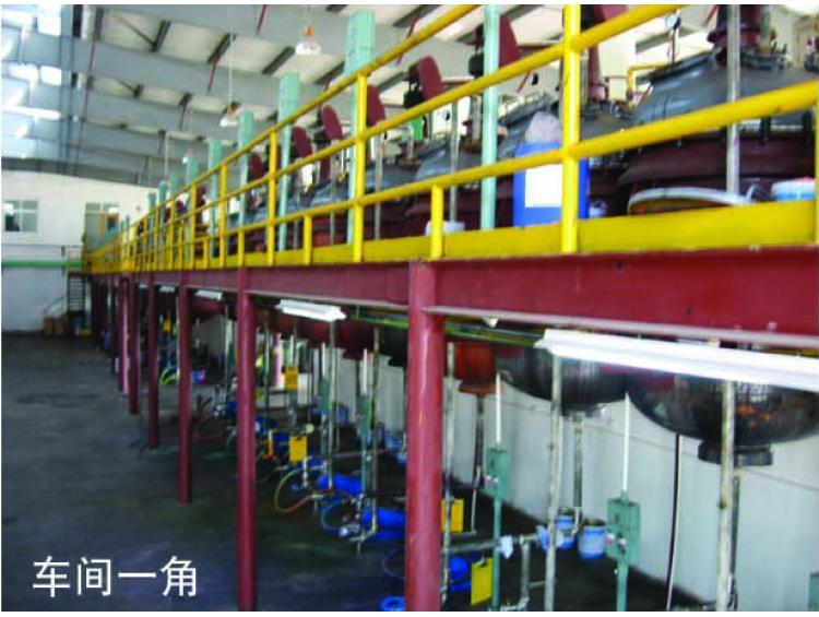 Pigment Preparation Factory